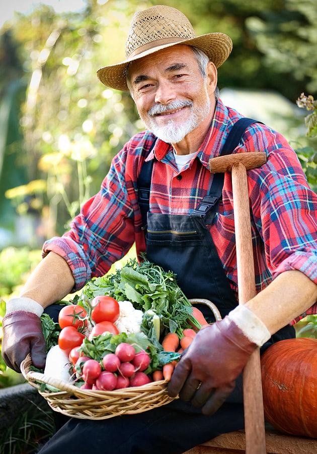 bigstock-gardening-9646085
