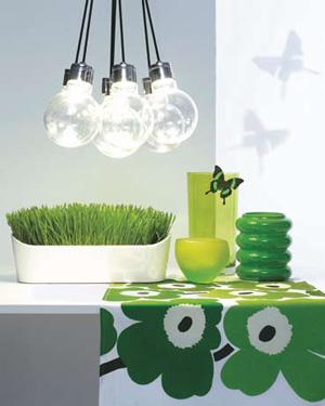 Going Green Kitchen Appliances 1